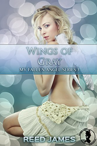 Wings of Gray (My Fallen Angel 3) (English (Big Wings Angel)