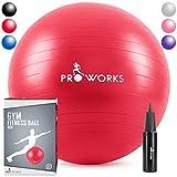 Proworks Gymnastikball [65cm] Heavy Duty Sitzball für Sport Physiotherapie Schwangerschaft Yoga Pilates - Fitness Ball für Rückenübungen und Dehnübungen - in 6 Verschiedenen Farben inkl. Pumpe - Rot
