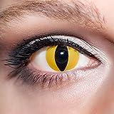 KwikSibs farbige gelbe Kontaktlinsen Vampiraugen 1 Paar (= 2 Linsen) weiche Funlinsen inklusive Behälter (Stärke / Dioptrie: 0 (ohne))