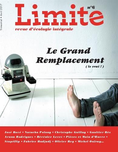 Limite n° 6 : Le Grand remplacement