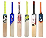 Best Cricket Bats - Samaira Sunshine Kashmir Willow Cricket Bat With Br Review