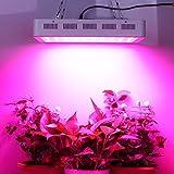 Roleadro Led Pflanzenlampe Dimmbare Vollspektrum 300w Led Grow Wachsen Licht con Blau Rot fur Chili Gewächshaus Pflanzen Bluemn im Growbox