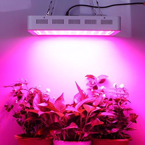 Roleadro-Led-Pflanzenlampe-Dimmbare-Vollspektrum-300w-Led-Grow-Wachsen-Licht-con-Blau-Rot-fur-Chili-Gewchshaus-Pflanzen-Bluemn-im-Growbox