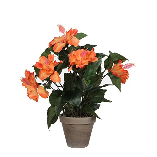 MICA Decorations Hibiscus IN Stan Topf, Polyester, orange, 30 x 30 x 40 cm, 6-Einheiten - Hibiscus Topfpflanze