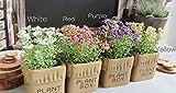 Idillio campagna giardinaggio ricreativo simulazione fiore artificiale fiore di plastica fiore GypsophilaColori di Gypsophila disponibili: Viola, Giallo, Rosso, Bianco.Altezza complete: 14cm. Diametro di Botte: 6.5cm. Altezza di Vaso: 6cm. Id...