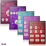 [5er Set] G-Punkt-Massage, Yoni-Massage, Lingam-Massage, Sanfte Klitorismassage, Weibliche Ejakulation: Ideal für die erotische Massage [5 Karten DIN A4 - 2seitig, laminiert]