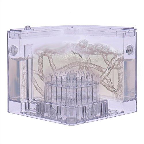 widen-electric-spass-ant-farm-ant-habitat-mit-wiederverwendbaren-gel-futterungssystem