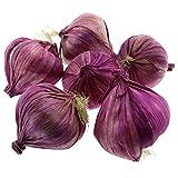 Gresorth 6 Pcs Artificiel Violet Garlic Décoration Faux Légume Accueil Fête Vacances Afficher
