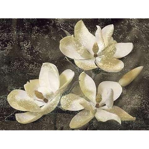 Impresión de Arte Fino en lienzo : The Magnolia Tree by Seba, John - Medio (140 x 106 Cms)