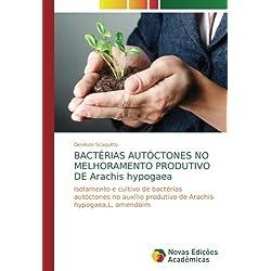 BACTÉRIAS AUTÓCTONES NO MELHORAMENTO PRODUTIVO DE Arachis hypogaea: Isolamento e cultivo de bactérias autóctones no auxílio produtivo de Arachis hypogaea,L, amendoim
