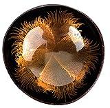 Batriozo Einzigartige Kokosnussschale – Gold – Hochwertige Dekoschale – 100% Handgemacht und Umweltfreundlich – Vielseitig Einsetzbar – Coconut Bowl - 2