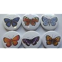 Kühlschrankmagnete Schmetterlinge