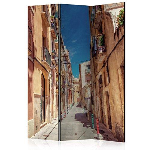 murando Paravent 135x172 cm Une Seule Côté Impression sur Toile intissée 100% Opaque Foto Paravent Décoratif en Bois avec Interieur Impression d-B-0101-z-b