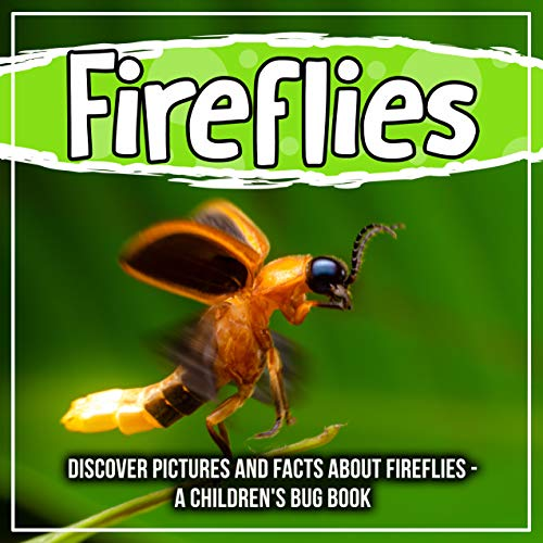 Pictures And Facts About Fireflies - A Children's Bug Book (English Edition) ()