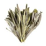 Salbei Bio Kräuter Tee Blätter - Gourmet Gewürz Direkt aus Griechenland - Ganze Blattküche Kräuter zum Kochen - Getrocknet 100g