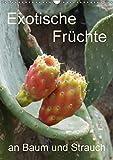 Exotische Früchte an Baum und Strauch (Wandkalender 2018 DIN A3 hoch): Tropisches Obst fotografiert wie es wächst an der Pflanze (Planer, 14 Seiten ) ... [Apr 01, 2017] Goldscheider, Stefanie