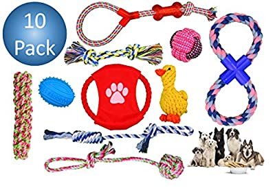 Dog Toys (10 Pack) For Big Dogs – Durable Chew Toys – Strong High-Quality Braided Rope – Interactive and Fun