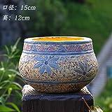 yqooo Große und mittlere Mediterraner Fleischig Old Flor Blumentopf Master Sukkulenten Steingut Blumentopf Keramik Blume