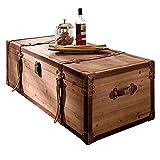 Miavilla Couchtisch Truhe Holz braun viel Stauraum ca. B110 x T50 x H35 cm