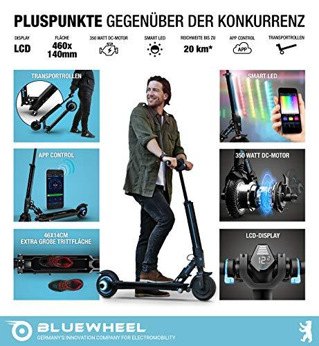 Bluewheel IX300