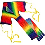 Anpro Einleiner Drachen Lenkdrachen Kit Drachen kinder Riesige Regenbogen Drachenflieger für Kinder ab 3 Jahren und Erwachsene einfach zu fliegen