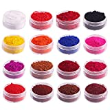 poudre de mica 16PCS Naturel Couleur Pigment Mica Poudre Maquillage Dye Set pour Soap Faire Nails Bombes de Bain Rouge À LèVres Ombre À PaupièRes