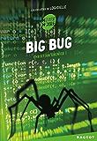 Big bug : Les enquêtes de Logicielle
