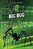 Big bug : Les enquêtes de Logicielle (French Edition)