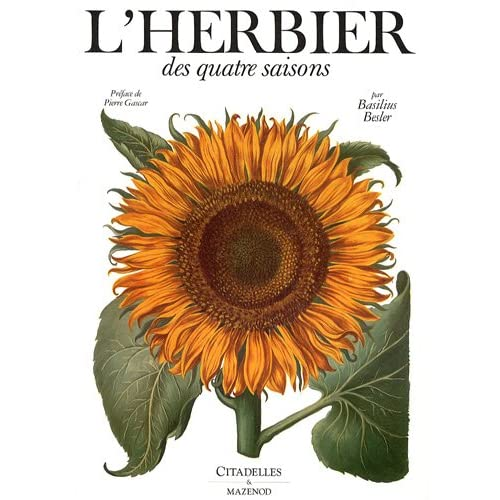L'herbier des quatre saisons : Ou Le jardin d'Eichstätt