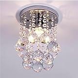 Goeco Deckenleuchte Glas Kronleuchter Edelstahl LED Kristall-Kronleuchter für Wohnzimmer, Schlafzimmer, Flur (6,29 Zoll Durchmesser, 9 Zoll Höhe)
