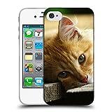 Just Phone Cases Schutz Hülle TPU Case Schutzhülle Silikon Tasche Dünn Transparent // V00004287 Katze liegend auf Holzbrettern // Apple iPhone 4 4S 4G