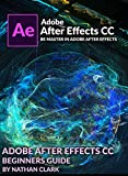 ADOBE AFTER EFFECTS CC BEGINNERS GUIDE (English Edition)