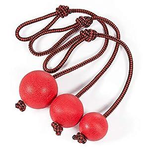 Comius Hundespielzeug Ball, 3 Stück Schleuderball für Hunde, Naturkautschuk...
