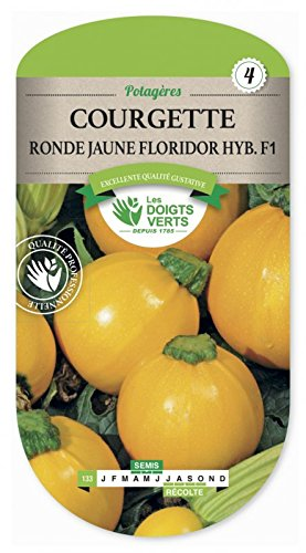 Les doigts verts Semence Courgette Ronde Jaune Floridor HYB.F1
