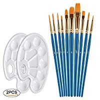 Xpassion 10Pieces Round Pointed Tip Nylon Hair Paint Brush Set with 1Piece Paint Tray Palette