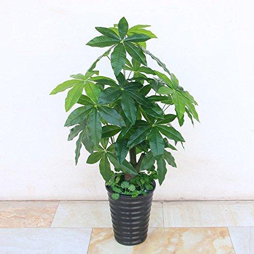 1M Simulation von künstlichen Blumen pflanzen Pachira Topf Kunststoff blumen Zimmerpflanzen Wohnzimmer aus dekorativem Kunststoff, fake Baum Bonsai