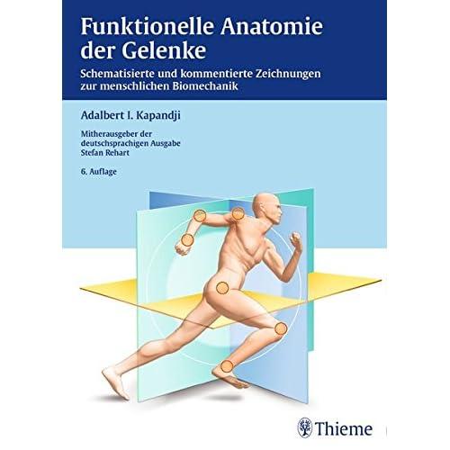 PDF] Funktionelle Anatomie der Gelenke: Schematisierte und ...