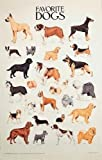 Favourite Dogs (Dover Posters)