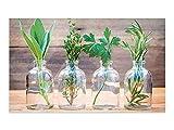 GRAZDesign Küchenbilder aus Glas Kräuter im Glas - Glas Wandbilder Holzoptik - Glasbilder grün für Küche Bars Cafe Wohnzimmer / 80x50cm / 100955_80x50_GP