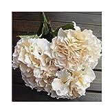 NO:1 künstliche Hortensie Seide Blume Blumenstrauß Dekoration 5 Blumen Champagner