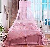 Moskitonetz Röcke Mücken- und Insektenschutz Bettvorhang für Doppelbett Einzelbett Kinderbett Urlaub Segel (Spitze Rosa)