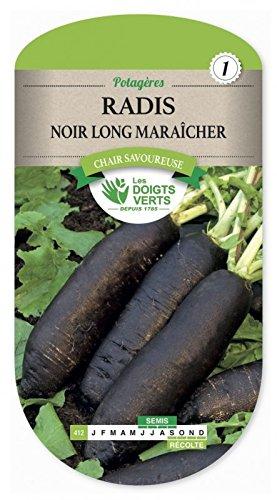 Les doigts verts Semence Radis Noir Long Maraîcher