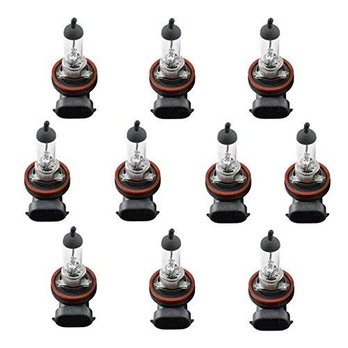 10 x Ampoules halogènes H11 12 V 55 W Culot pgj19–2 Lampe d'éclairage Blanc Ampoules Feux de croisement Feu antibrouillard Neu VKD Lima 19