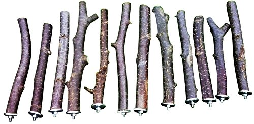10 Stück 15-25cm lange Haselnuss Sitzstangen ∅2,5cm für den Käfig 745