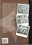 Image de Karate Kyokushinkai. Volumen 1º. Técnica, Kata, aplicaciones y programa de grados