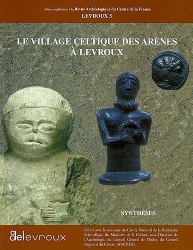 Le village celtique des arènes à Levroux : Synthèses