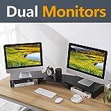 RFIVER Supporto Tavola Nera per Monitore Altoparlante del TV PC e Computer Portatile Supporto per Monitor Doppi Supporti Nero CM1009