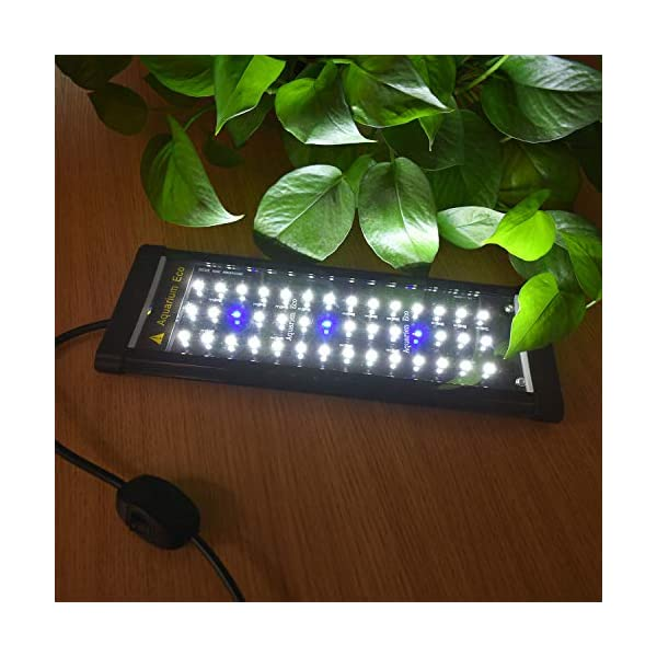Single Channel LCD Digital Timer, Dimmer for Aquarium Light, Timing Modulator with General DC Interface Fits All Fish…