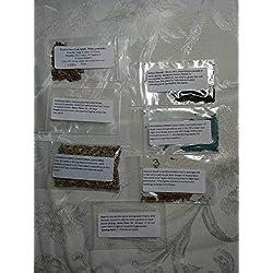PLAT FIRM GERMINATIONSAMEN: 8+ PKG BLUMENSAMEN Cornflower, Bellflower, Alyssum, Begonia, Marigold UND MEHR