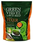 Green Velvet 1Kg Lawn Seed The Easy F...